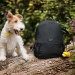 You'll Be Ready For Walkies With The Latest Radley 'Mutt-Have' Accessories