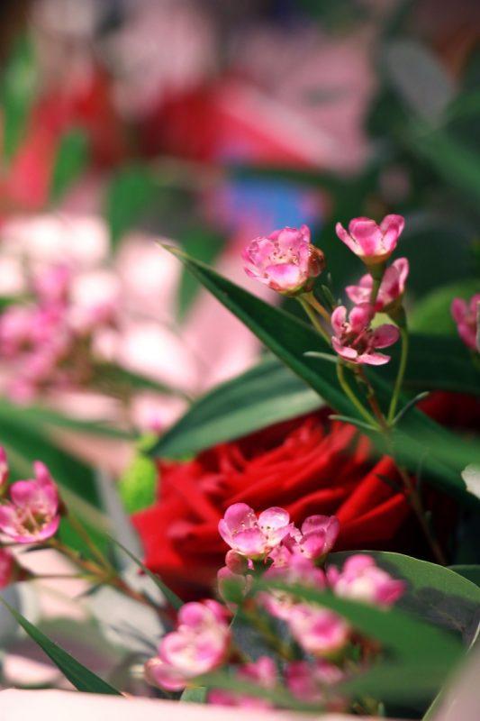 Sutton Coldfield florist opens pop-up store in Selfridges Birmingham