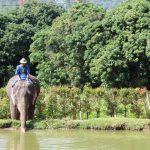 Charming Chiang Mai