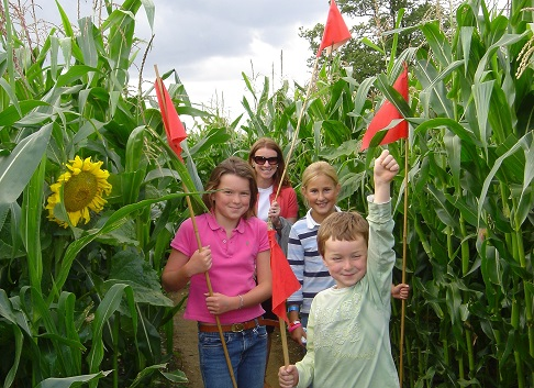 Flashing blue lights for Wistow Maze