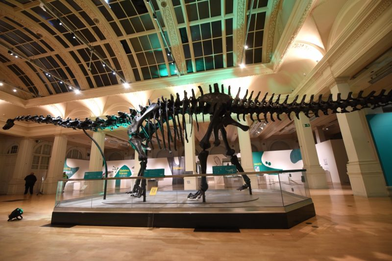 Extra Tickets Released For Dippy On Tour In Birmingham