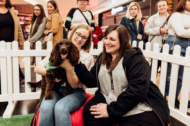 Shoppers take a paws this Valentine's Day at Bullring and Grand Central.