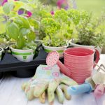 Your Essential Spring Guide to Making the Most of Your Outdoor Space