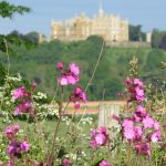 Belvoir Castle Reopens Gardens to Local Communities this Friday