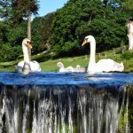 LOROS Reveals Winning Photos In Its Calendar Competition