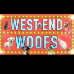 WEST END WOOFS! THEATRE LEGENDS LAUNCH STAR-STUDDED VIRTUAL ADOPTION EVENT