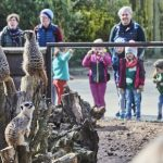 READY… SET… RE-OPEN! TWYCROSS ZOO WELCOMES BACK VISITORS