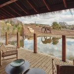 HIGHLY ANTICIPATED SAFARI LODGE STAYCATIONS OPEN IN THE HEART OF ENGLAND