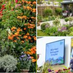 Special Edition Of BBC Gardeners' World Live Comes To Birmingham